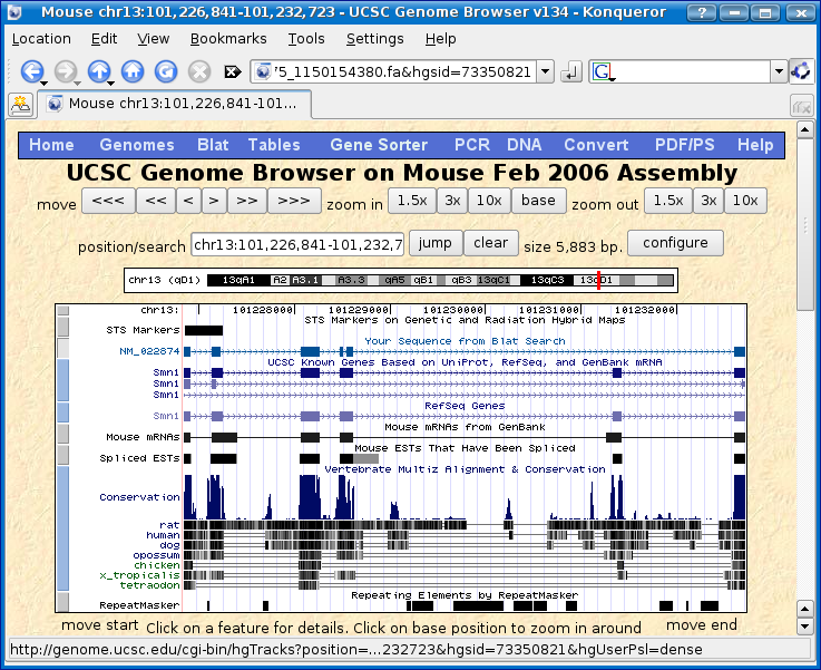 genome browser blat